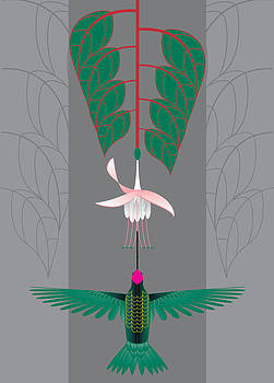 Fuchsia by Marie Sansone