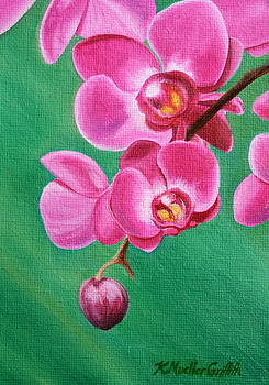 Fuchsia Orchid by Kristine Mueller Griffith