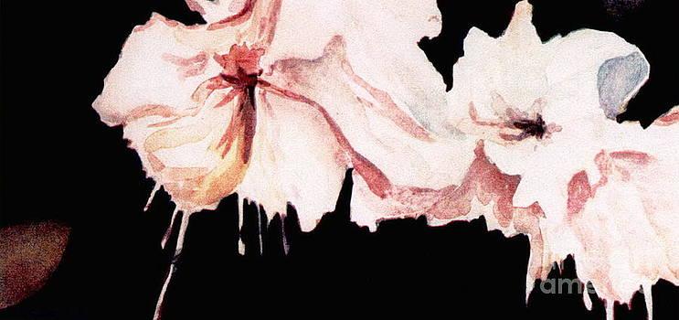 Fuchsias by Joyce Gebauer