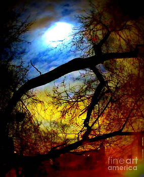 Full Crow Moon by Maria Scarfone