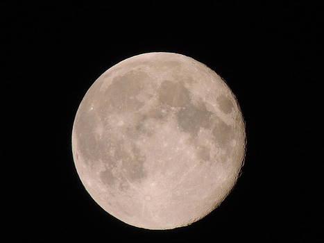 Anastasia Konn - Full Moon