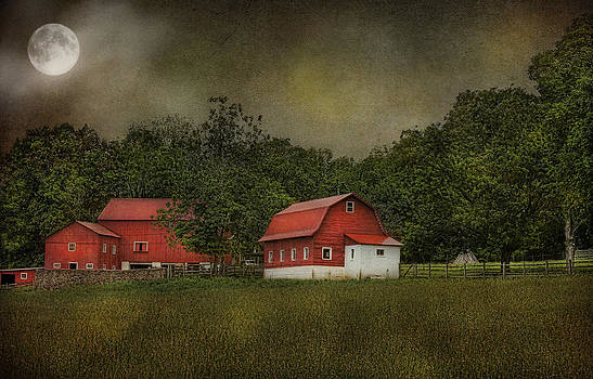Full Moon At Buffalo Hollow Farm by Pat Abbott