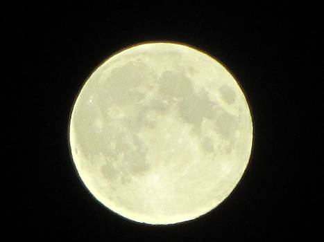 Full Moon Axis by Debbie Nester