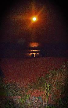 Patricia Taylor - October Moon Beachlight