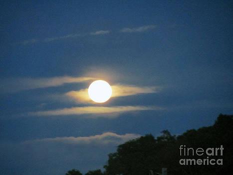 Full Moon Cape Cod Ma by Lisa  Marie Germaine
