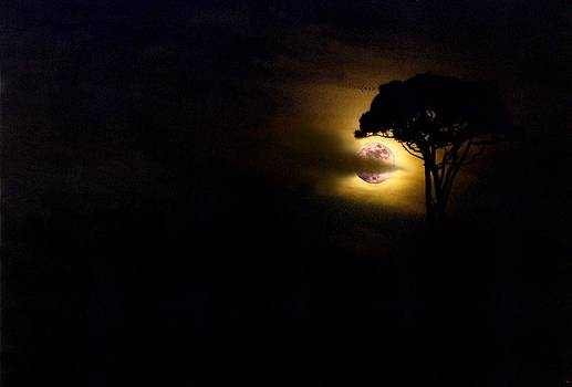 Full moon by Dave Hrusecky