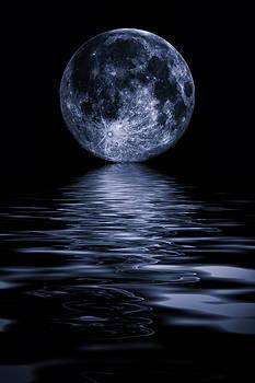 David Pringle - Full Moon