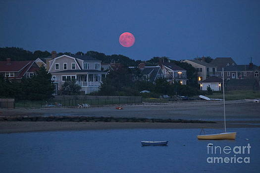 Amazing Jules - Full Moon in Hyannis