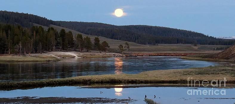 Harriet Peck Taylor - Full Moon in the Hayden