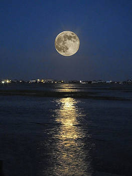Terry Shoemaker - Full Moon over Garden City