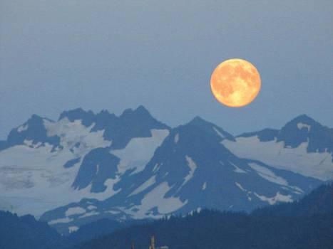 Lisa Dunn - Full moon over Homer