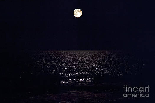 Jeff Holbrook - Full Moon Over Lake Huron