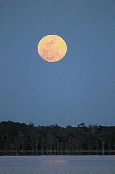 Full Moon over Ocean Pond by Bob Richter