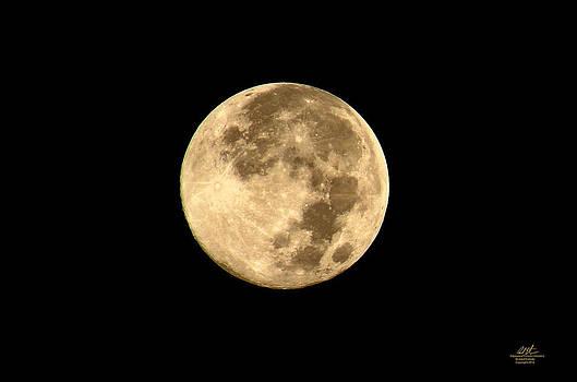 Full Moon by Richard Estrada