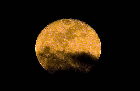 Full Moon Rising by Austin Brown