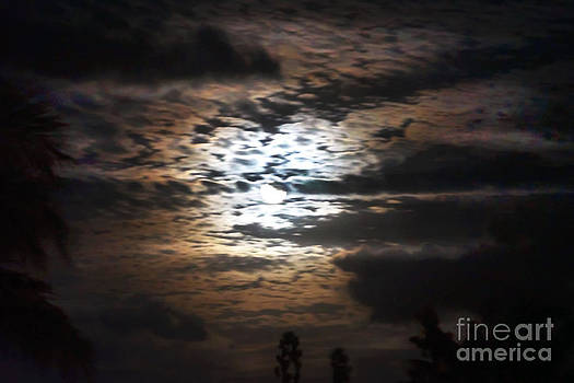 Full moon rising by Ursula Gill