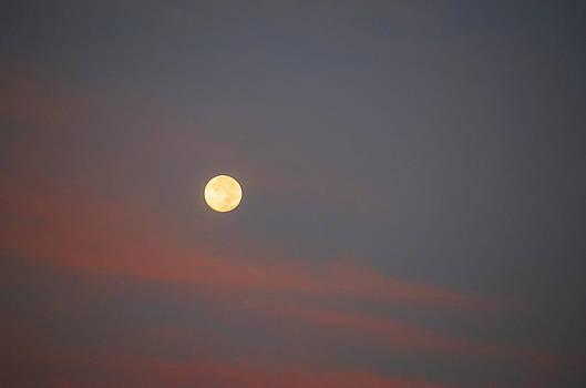 Sharon Popek - Full Moon