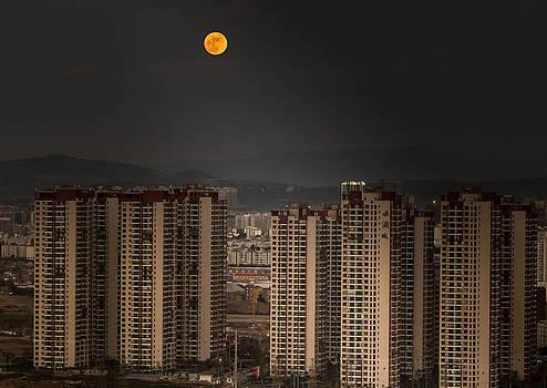 Full Moon by Tom Liesener