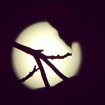 Full #moon. #twig by Brian Harris