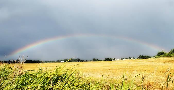 Rebecca Frank - Full Rainbow