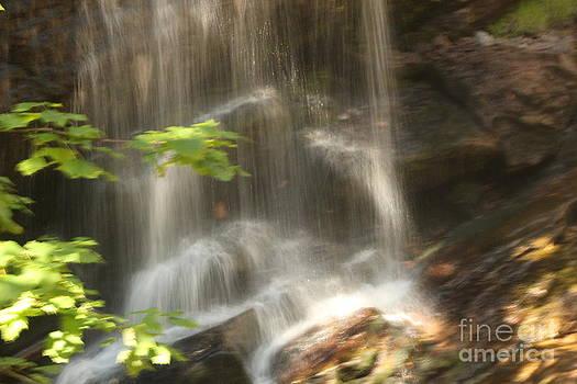Fuller Falls by Margaret Hamilton