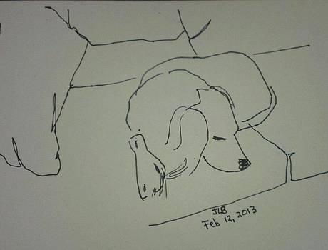 Fulmi sleeping by Janet Butler