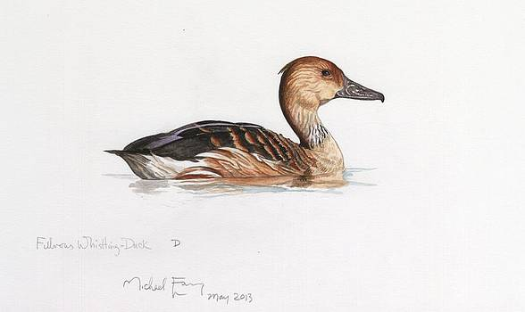 Michael Earney - Fulvous Whistling Duck