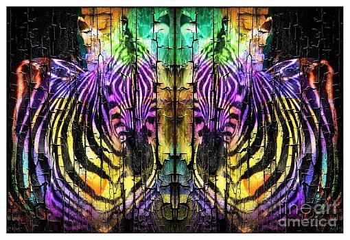 Fun Zebras by Kathleen Struckle