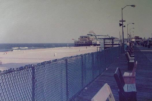 Funtown Pier and LogFlume Seaside Heights NJ by Joann Renner