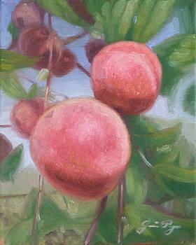 Fuzzy Peaches by Jamie Pogue