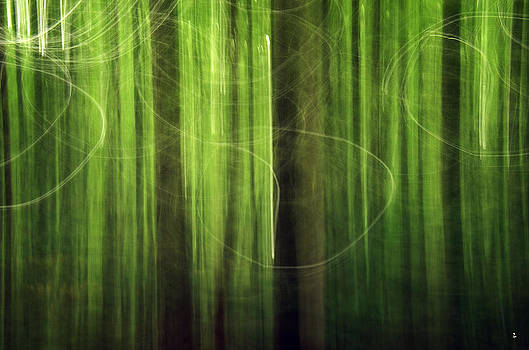 Minartesia - Fuzzy Woods