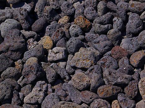 Galapagos pebbles by David Otter