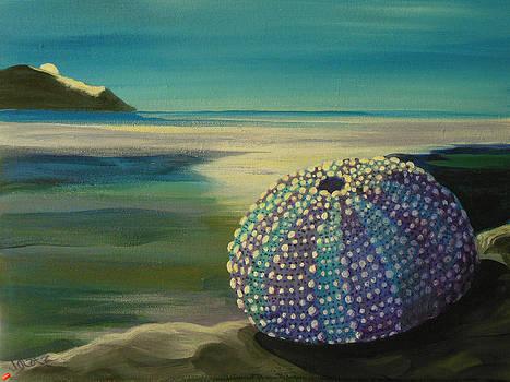 Galateia's Gift by Janet Glatz