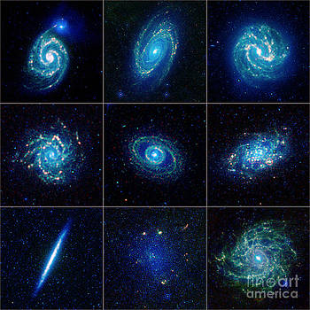 Science Source - Galaxy Menagerie
