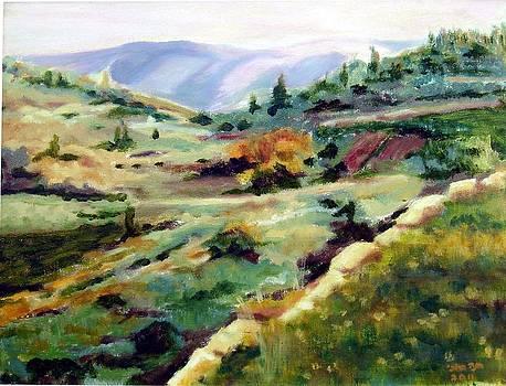 Galilee by Hannah Baruchi