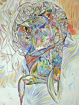Gallo by Eduardo Sancamillo