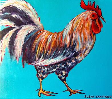 Gallo by Susan Santiago
