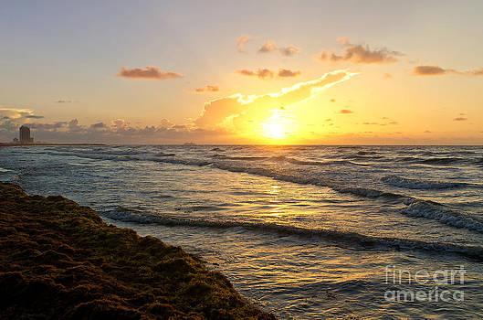 Galveston Sunrise by Cathy Alba