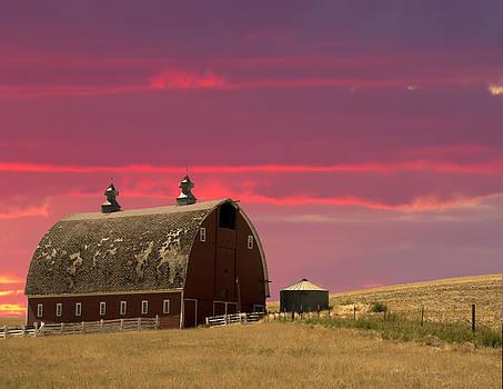 Randall Branham - Gambriel Roof Red Barn