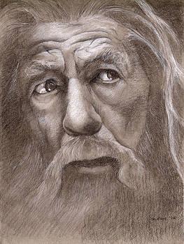 Gandalf the Grey by Glenn Daniels