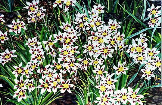 Garden Dance by Gael Graysen