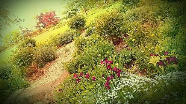 Garden Wish by Dawn Vagts