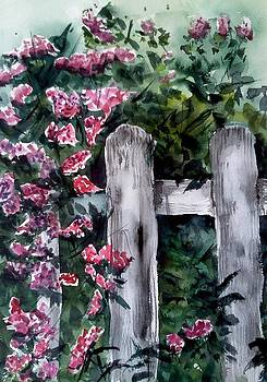 Garden fence by Stephanie Sodel