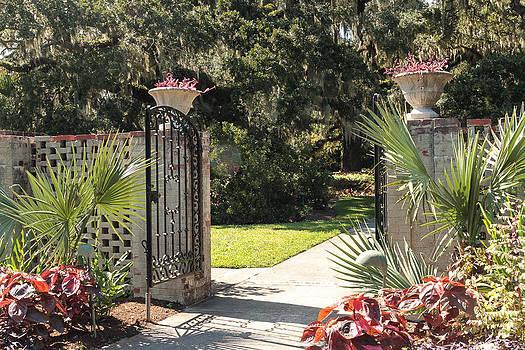 Garden Gate by Dulce Levitz