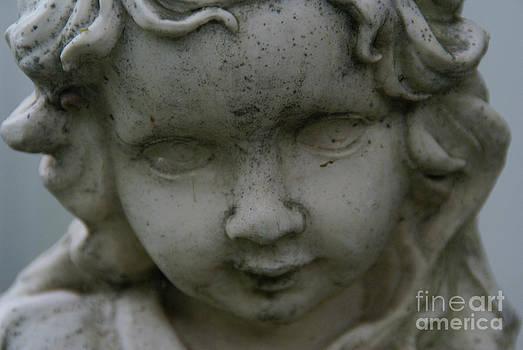 Linda Shafer - Garden Girl