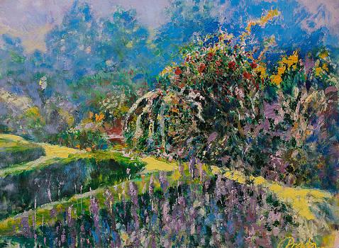 Garden by Horacio Prada
