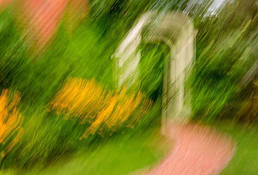 Steve Harrington - Garden Impression