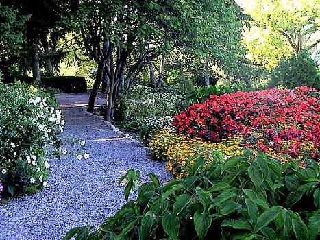 Garden Path by Paul Versaw