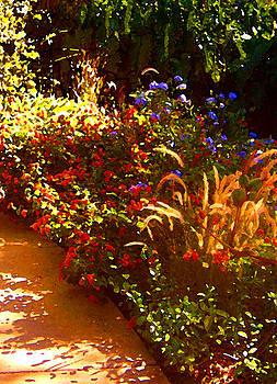 Amy Vangsgard - Garden Pathway