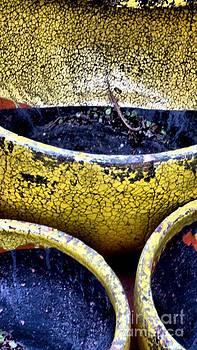 Garden Pots by Claudette Bujold-Poirier